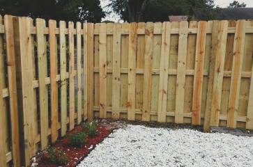 traditional-wood-fence-in-backyard-with-white-and-red-bark-butting-up-to-the-fence-and-a-few-bushes